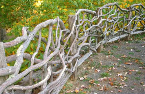 Забор из коряг